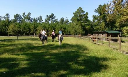 Hope Haven Equestrian Center
