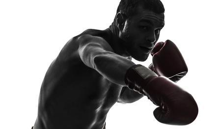 Gladiator Mixed Martial Arts