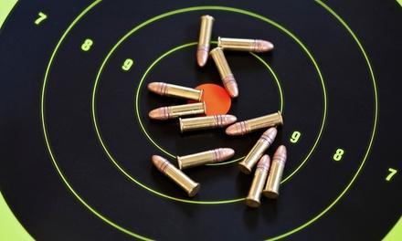 Bullet Trap