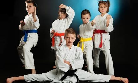 4 Kicks Martial Arts