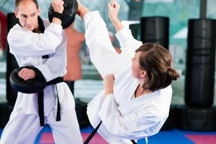 High Performance Tae Kwondo