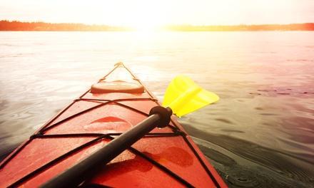 Apple River Kayak