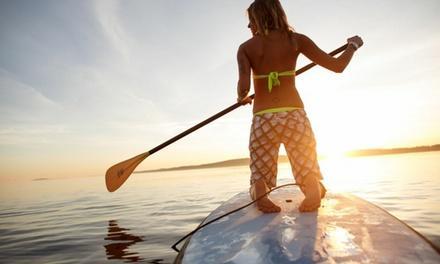 Tampa Bay Paddle Company