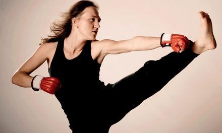 Camarillo Mixed Martial Arts and Fitness