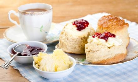 Southern Belle Biscuits