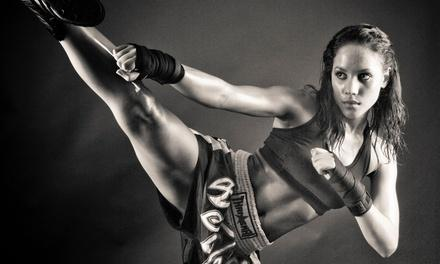 Evolution Mixed Martial Arts and Fitness