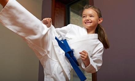 Mid America Karate Academy