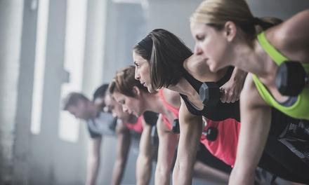 Twice Bitten CrossFit