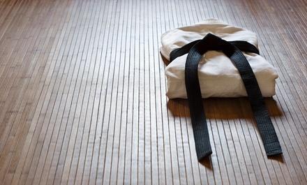 Kara Judo LLC