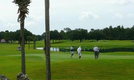 The Links of Spruce Creek