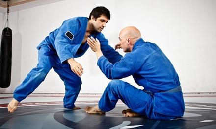 Budo Martial Arts Studio