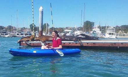 Balboa Kayaks