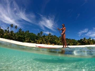 Long Island Stand-Up Paddle Boarding Co.