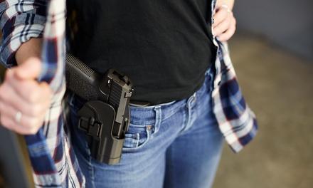 Armed Guardian