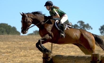 Kristen at North Texas Equestrian Center