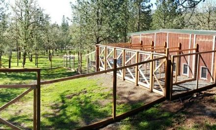 Outback Kennels
