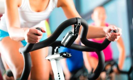 Accelerate Your Fitness