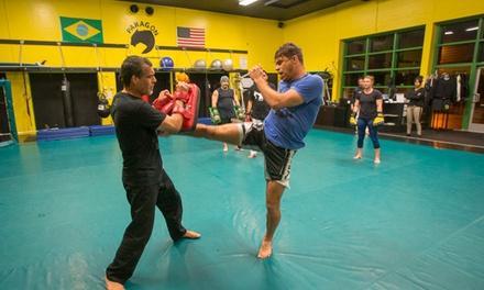Paragon Jiu Jitsu & Kickboxing