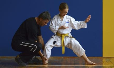 Craig Lowe's Kempo Karate