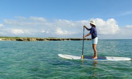 Hawaiian WaterSports