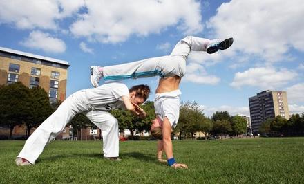 Ann Arbor Capoeira: CDO