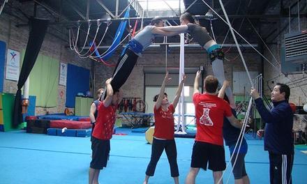 MSA & Circus Arts