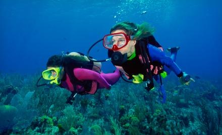 Tropical Adventures Scuba and Travel