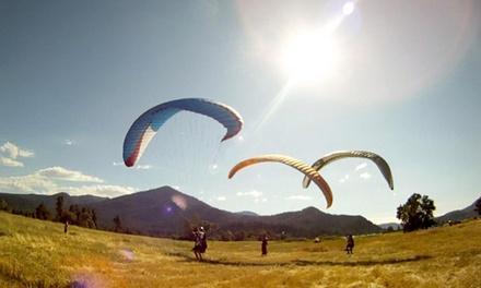 Flying Lizard Paragliding