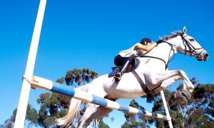 Horses 4 Hope Equestrian Center