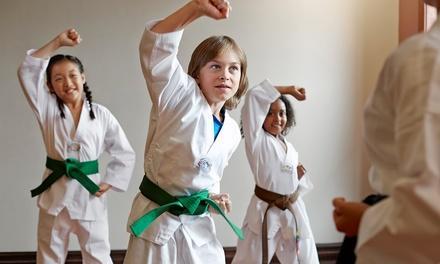 Taekwondo at The Gymnastics Place