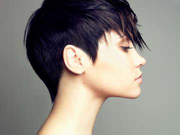 Wild Iris Hair Salon