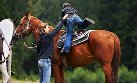 Turner Hill Equestrian