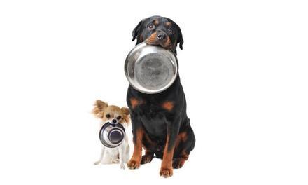 Argos, All-Natural Pet Food & Supply