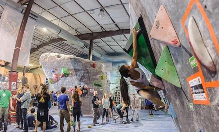 The Spot Bouldering Gym