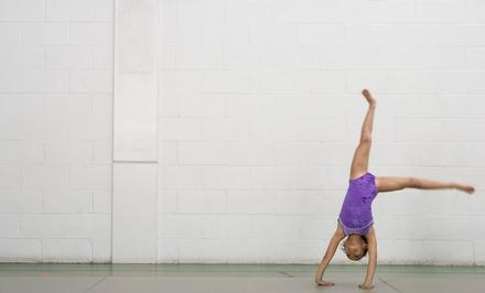 Unity Acrobatics Sports