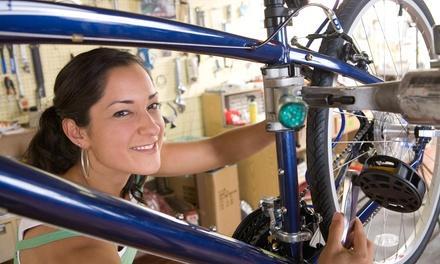 LakeShore Bicycles