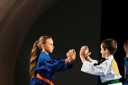 world's best tae kwon do