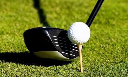 John DelVecchio School of Golf