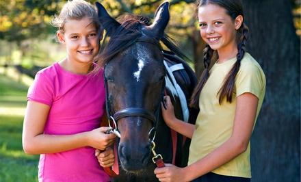 Gladstone Equestrian