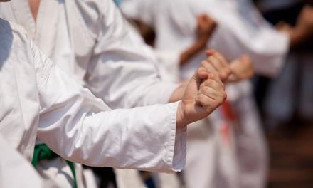 Macon's Martial Arts