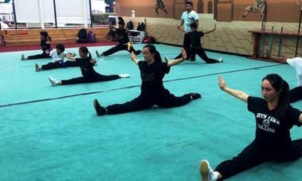 Usa Wuchi Kungfu Academy