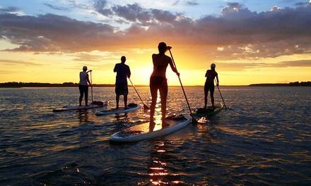 Palmetto Paddle Sports