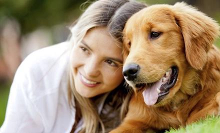 Holistic Animal Care Shoppes