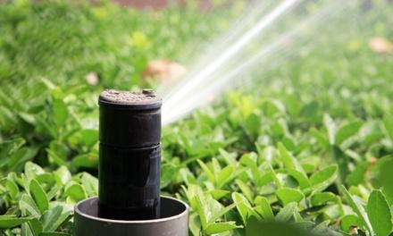 Advance Irrigation and Outdoor Solutions