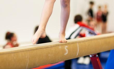 Champions Gymnastics Training