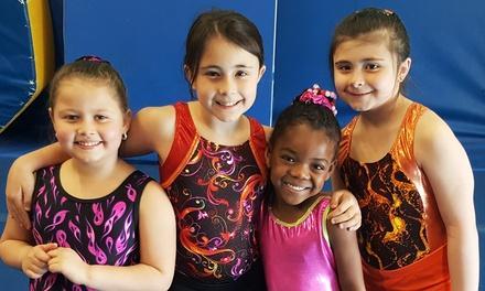 Gymnastics For Kids Julies Gym