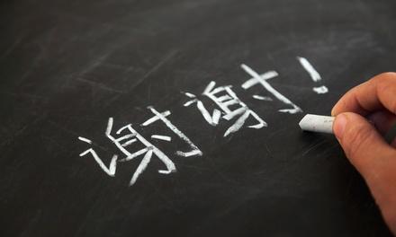 Ibridge Language Llc