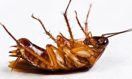 Gordon Family Pest Control