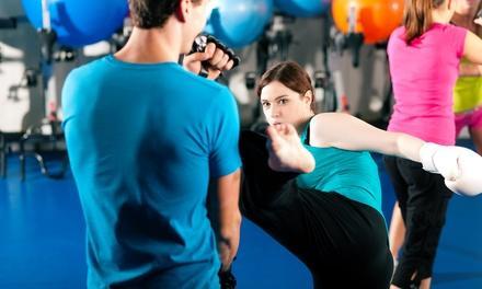 Hybrid Academy of Mixed Martial Arts