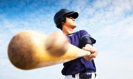 TM Baseball & Softball Academy
